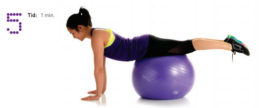 Treningsprogram Abilica FitnessBall